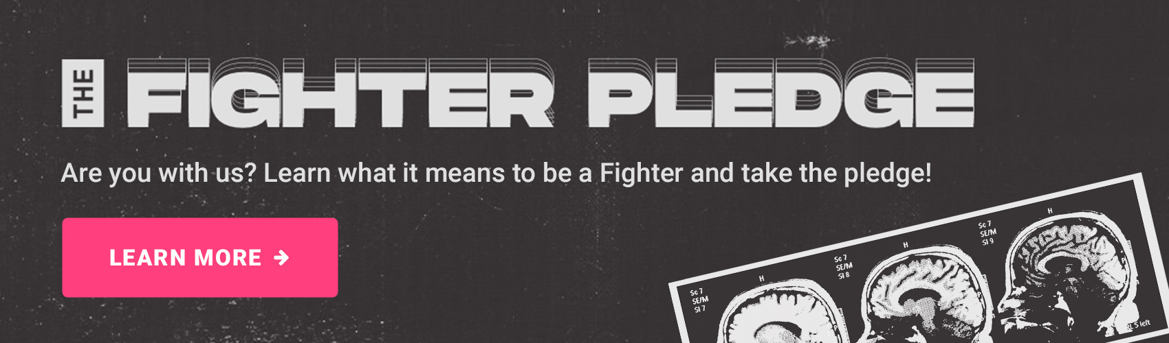 Fighter Pledge